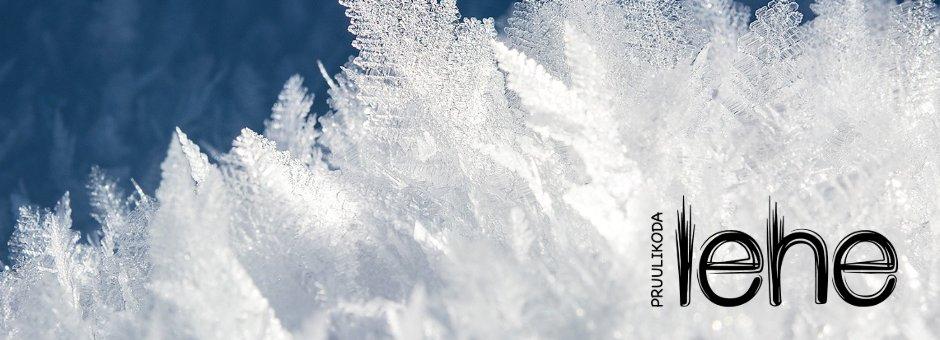 Lehe pruulikoja talvine pilt